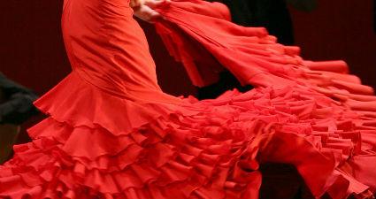 Artistas del arte flamenco en cartera